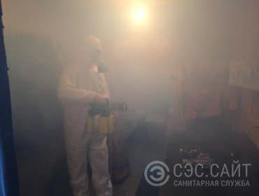 Обработка квартиры от вшей и гнид горячим туманом