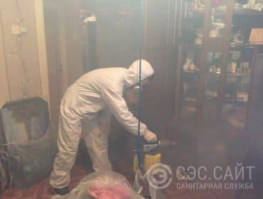 Уничтожение блох в квартире методом горячего тумана