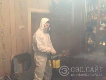 Уничтожение кожеедов в квартире горячим туманом