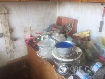 Фото грязной кухни с тараканами