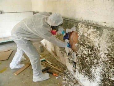 Фото мастера демонтирующего пораженные плесенью участки стены