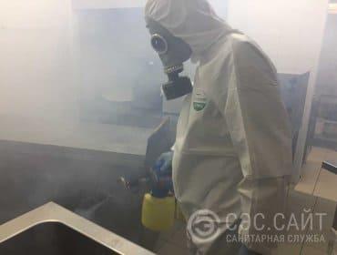 Дезинфекция кухни горячим туманом
